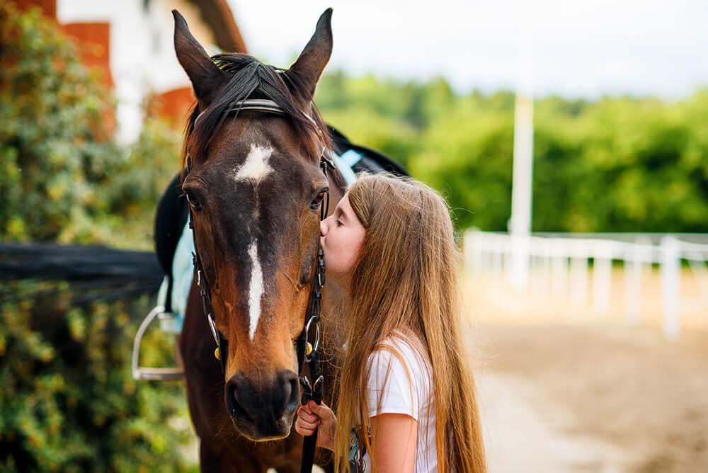 Sesja Wiktorii z koniem